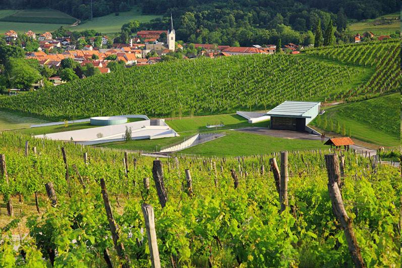 Modern wine cellar, Škalce, Zlati grič, Slovenske konjice